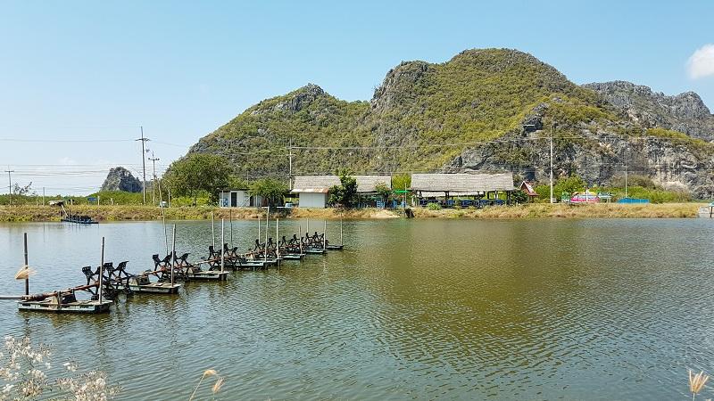 Imagem de uma ampla área aquática destinada à criação de peixes.
